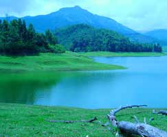 Package Tour To Periyar